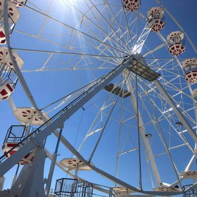 Grande roue 30 m 1